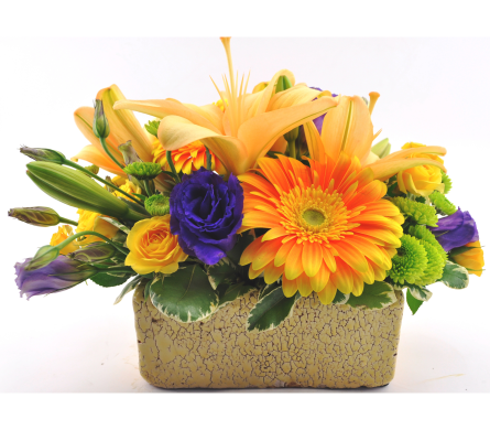 Mountain Meadow in Knoxville TN, Crouch Florist & Gift