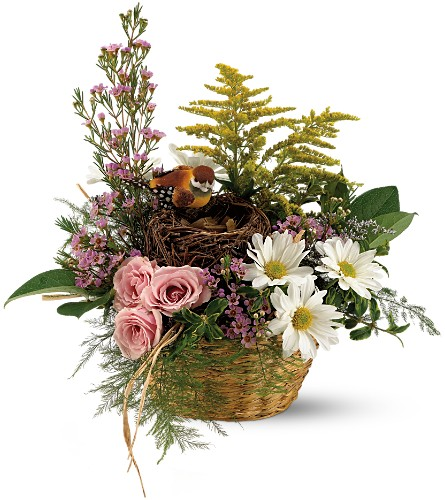 Teleflora's Nesting Basket in Liverpool NY, Creative Florist