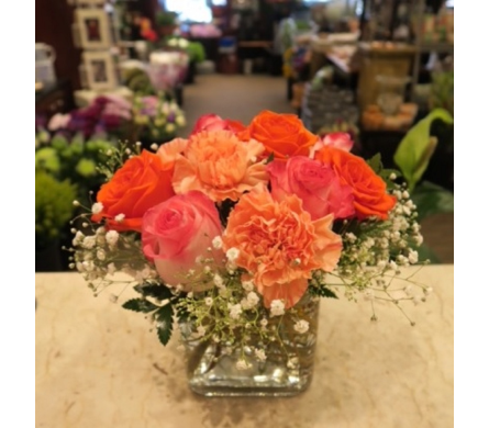 Rich and Rosy in Princeton, Plainsboro, & Trenton NJ, Monday Morning Flower and Balloon Co.