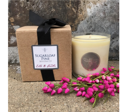 Sugarloaf Pine Candle in Boulder CO, Boulder Blooms