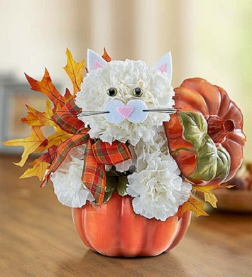 Fabulous Feline for Fall in Camp Hill and Harrisburg PA, Pealer's Flowers