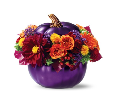 Royal Pumpkin Bouquet in Eden Prairie MN, Belladonna Florist