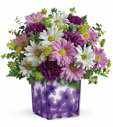 Teleflora's Dancing Violets Bouquet in Lemont IL, Royal Petal