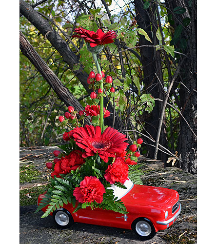 Mustang Dreams in Indianapolis IN, Gillespie Florists