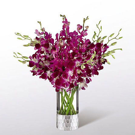 Orchid Bouquet by Vera Wang in New York NY, CitiFloral Inc.