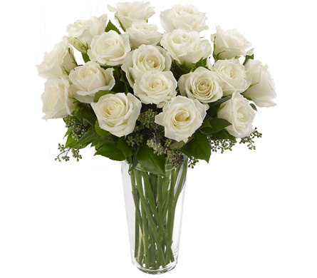 Premium Long Stem White Roses in Birmingham AL, Norton's Florist