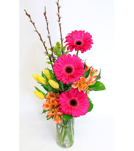 Gracious Gerberas in Lower Gwynedd PA, Valleygreen Flowers and Gifts