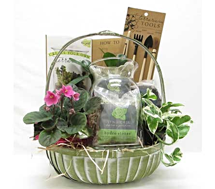 Create Your Own Terrarium in Amherst NY, The Trillium's Courtyard Florist