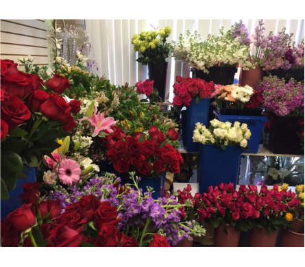 Our Fresh Flower Assortment in Fairfax VA, Exotica Florist, Inc.