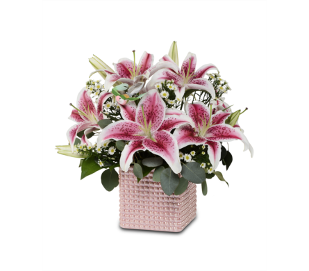 Blushing Lilies in St. Louis MO, Walter Knoll Florist