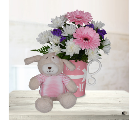 It's a Girl Mug with Stuffed Animal in Dallas TX, In Bloom Flowers, Gifts and More