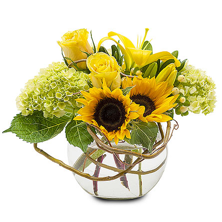Sunshine Rays in Bel Air MD, Richardson's Flowers & Gifts