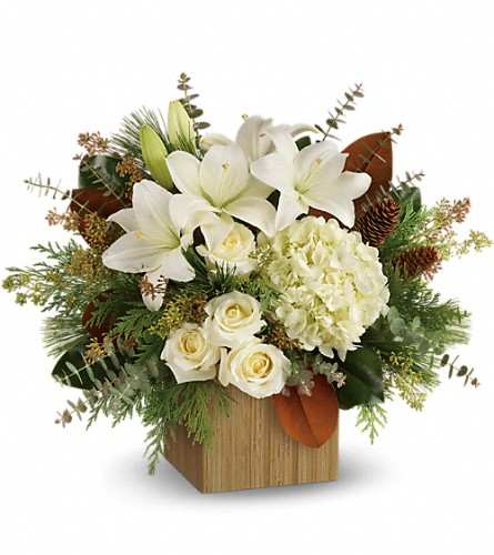 Teleflora's Snowy Woods Bouquet in West Chester OH, Petals & Things Florist
