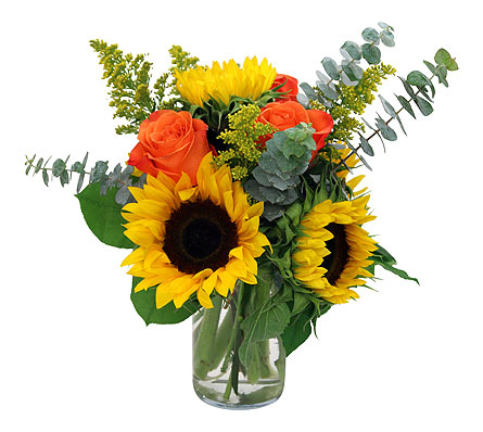 Sunburst in Detroit and St. Clair Shores MI, Conner Park Florist