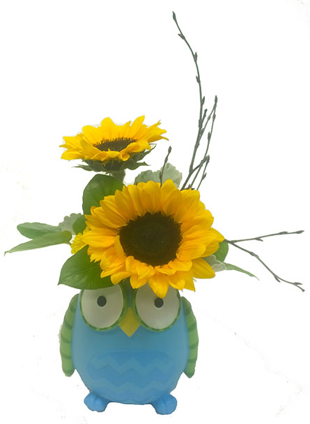 Give a Hoot in Perrysburg & Toledo OH  OH, Ken's Flower Shops