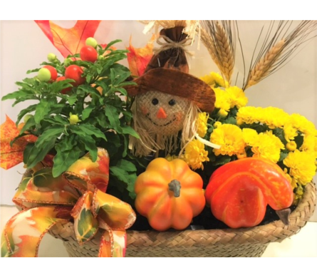 Bountiful Harvest basket in Bismarck ND, Dutch Mill Florist, Inc.
