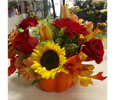 New England Pumpkin in Needham MA, Needham Florist