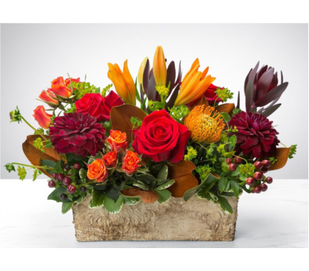 New England Harvest in Needham MA, Needham Florist