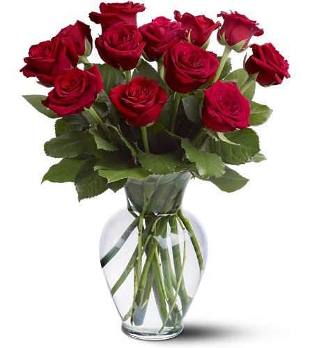 12 Red Roses Local and Nationwide Guaranteed Delivery - GoFlorist.com