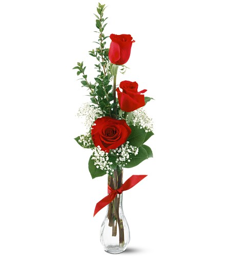 3 Red Roses in Oklahoma City OK, Capitol Hill Florist & Gifts