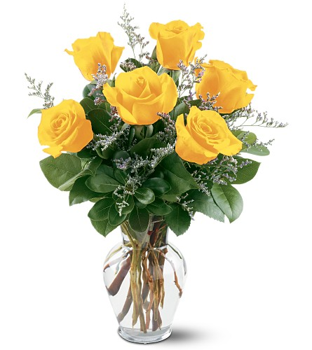 6 Yellow Roses in Arlington Heights IL, Sylvia's - Amlings Flowers