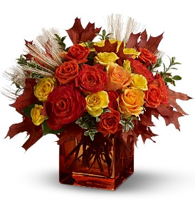 Teleflora's Fine Fall Roses in Meriden CT, Rose Flowers & Gifts Inc.