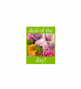 Deal of the Day Bouquet in Avon OH, The Hen 'N The Ivy