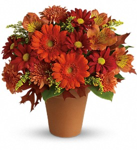Golden Glow in Orwell OH, CinDee's Flowers and Gifts, LLC