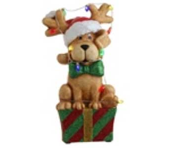 Christmas Dog on Package in San Antonio TX, Best Wholesale Christmas Co