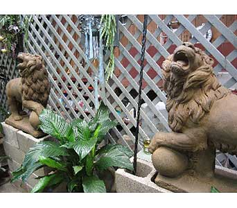 Pair of Lions in San Antonio TX, Best Wholesale Christmas Co