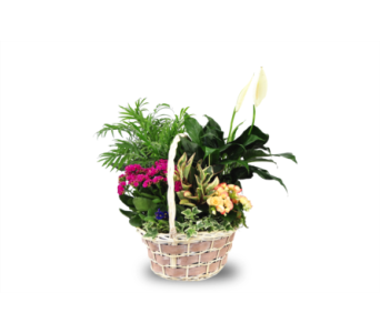 Blooming Garden Basket in Bound Brook NJ, America's Florist