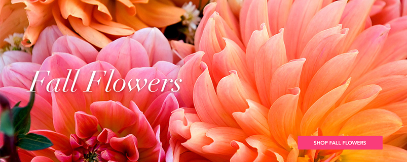 Send Spring flowers to Jackson, MI with Brown Floral Co., your local florists