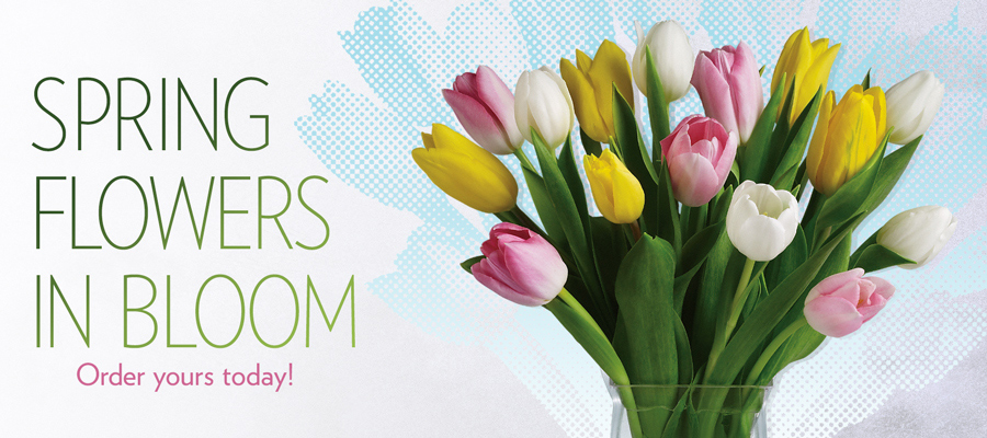 Send Spring flowers to Toledo, OH with Myrtle Flowers & Gifts, your local florists
