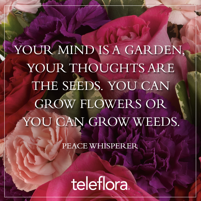 Flower Quote 13 - Your mind is a garden | Teleflora Blog