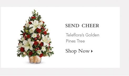 Send Cheer!