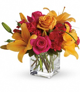 Teleflora's Uniquely Chic Get Well Bouquet