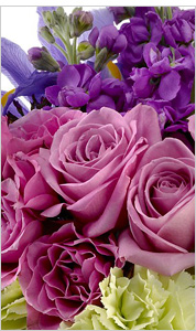 Purple Boquet