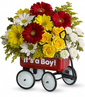 Wow baby wagon gift