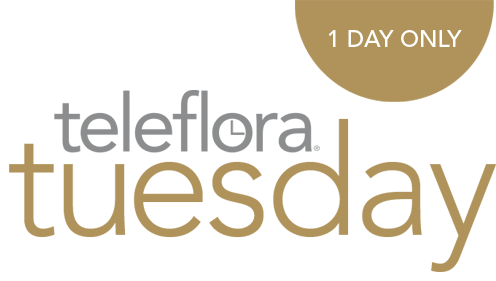 Introducing teleflora tuesday Now through Christmas, youll have exclusive access to one-day every tuesday.  signup now and dont miss out!