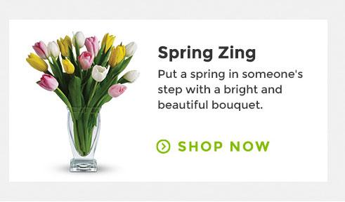 Zeste du printemps
