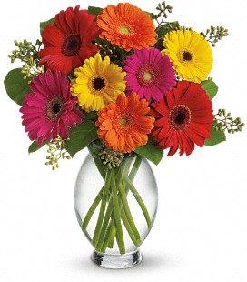 Gerbera Brights Thank You GIft