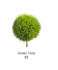 Green Trick