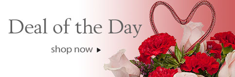 Send Flowers to Edmonton, AB with Flowers By Merle, your local Edmonton florist