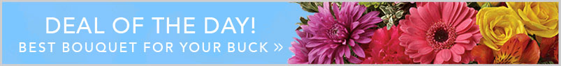 Send Flowers to Calgary, AB with Charlotte's Web Florist, your local Calgary florist