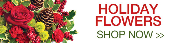Send Flowers to Bracebridge, ON with Seasons In The Country, your local Bracebridge florist