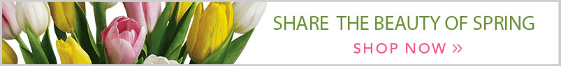 Send flowers to Berkeley, CA with Darling Flower Shop, your local Berkeley florist