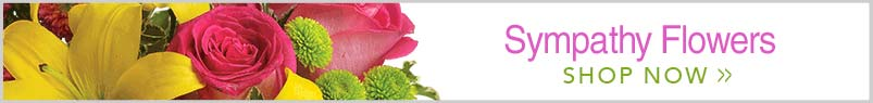 Send Flowers to Folsom, CA with The Blossom Shop, your local Folsom florist