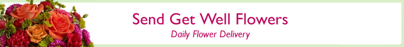 Send Flowers to San Diego, CA with Genesee Florist, your local San Diego florist