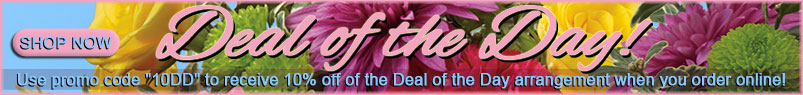 Send Flowers to Bradenton, FL with Tropical Interiors Florist, your local Bradenton florist