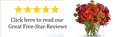 Read our reviews!!
